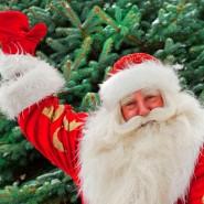 Программа «Здравствуй, Дедушка Мороз!» фотографии