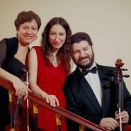 Органный концерт «В созвучии с природой» фотографии