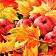 «Осенние мотивы» фотографии