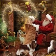 Представление «Новогоднее приключение Скай и Фунтика» фотографии