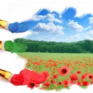 Программа «Краски лета» фотографии