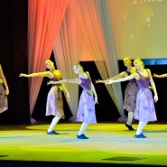 Концерт, посвящённый Дню героев Отечества фотографии
