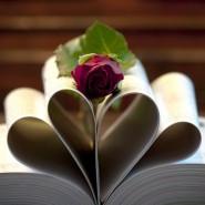 Библиолото «Любимые книги» фотографии