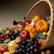Праздник урожая «Осенняя палитра» фотографии