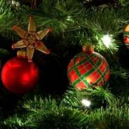 Праздник «Приключения у новогодней елки» фотографии