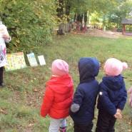 Экологический час «Это ходит, бродит осень» фотографии
