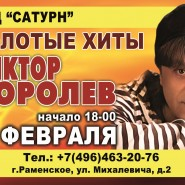 Концерт Виктора Королева фотографии