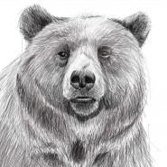 Спектакль «Медведь» фотографии