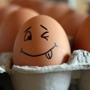 Вечеринка «Праздник крутого яйца» фотографии