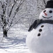 Игровая программа «Разноцветные снеговики» фотографии