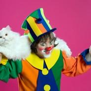 Спектакль «Кошки в городе» фотографии