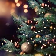 Программа «Новогодний блеск огней» фотографии