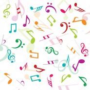 Программа «По следам бременских музыкантов» фотографии