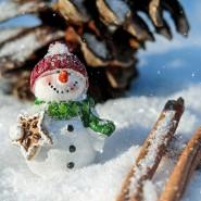 Новогоднее шоу «Тайна Ледяного царства» фотографии