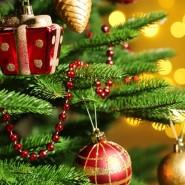 Праздники «Новый год в гостях у Буратино» фотографии