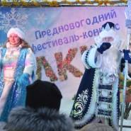 Фестиваль «Ёлки» фотографии