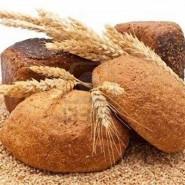 «Хлеб – всему голова» фотографии