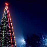 Праздник «Торжественное зажжение огней на главной новогодней елке мкр. Львовский» фотографии