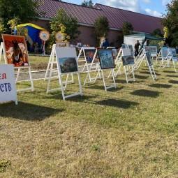 Выставка художественных работ, посвященная Дню Победы