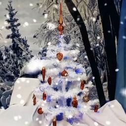 Видео час - «О Рождестве и рождественских традициях»