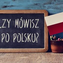 Польский язык.