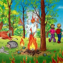 Беседа« Пожарная безопасность в лесу»