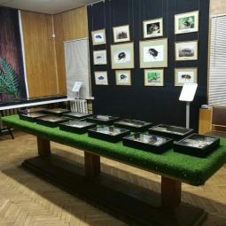 Виртуальная выставка «Усадебный микромир»