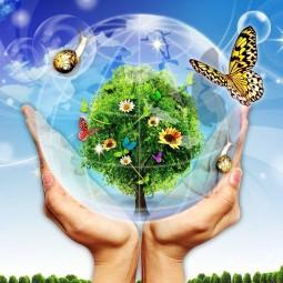 «Природа–это дом,в котором мы живем»