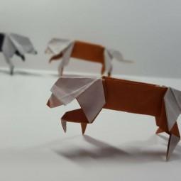 Виртуальный мастер-класс «Собака-кусака»