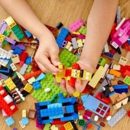 «Lego Go»
