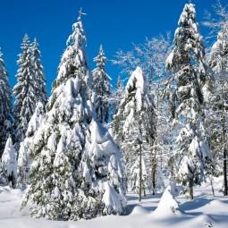 «Снежная-нежная сказка зимы»