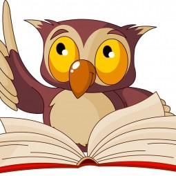 Программа «Загадки мудрого филина»