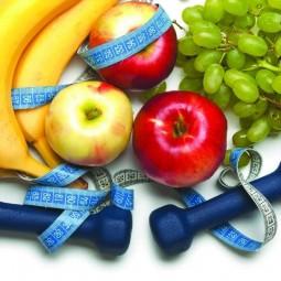 Познавательная программа «Территория здорового питания»