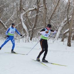 Виртуальная встреча «Имитация лыжных ходов»