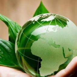 «Земля наш дом родной, давайте его сбережем!»