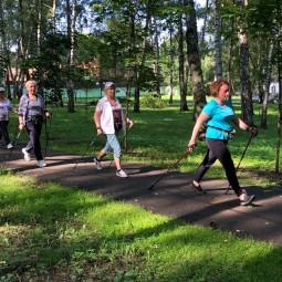 Программа «Скандинавская ходьба»
