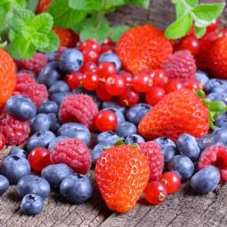 «Всё о ягодах»