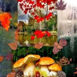 Осень - славная пора