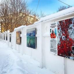 Выставка «М.Г. Абакумов. Живопись»