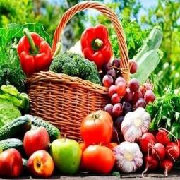 «Фрукты и овощи–осенний урожай»