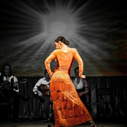 Мастер-класс «Фламенко»
