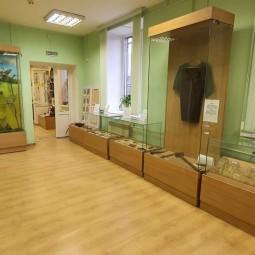 Виртуальная экскурсия по залу «Природа Шатурского края»