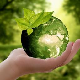 Тематическая встреча «Желаю тебе, земля моя»