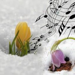 «О весне, о любви и о жизни...»
