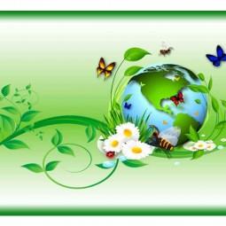Экологическое лото «Удивительный мир природы»