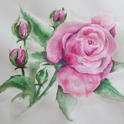 Виртуальное занятие «Техника рисования цветка «Камелия»