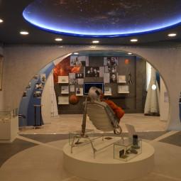 «Обзорная экскурсия по экспозиции музея»