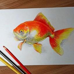 Мамы-онлайн. Мастер-класс по рисованию «Золотая рыбка»