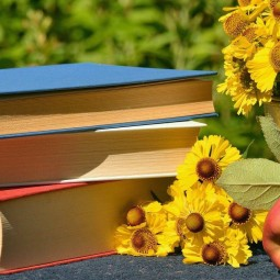 Летний читальный зал «#Лето_без_границ»