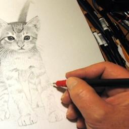 Виртуальный мастер-класс «Простое рисование»